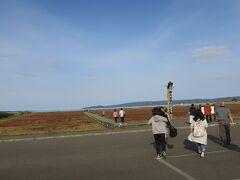 そして次に向かったのが、能取湖のサンゴ草群生地。日本一の規模。 人気のスポットということで、こちらにはたくさんの人の姿。