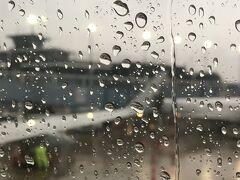 到着も2時間半遅れの17:20 でした(時差1時間)。 外は大雨。この雨で着陸許可が出ずディレイになった、と勝手な推測。