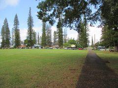 ラナイ島中心地ラナイシティにある公園。 ここを中心に町があるってイメージ。