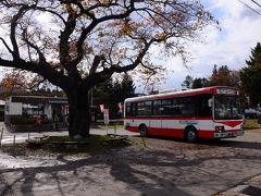 10:28のバスに乗り、中山平温泉駅へと向かう。 往きの大混雑が嘘のように、車内はガラガラだった。 そして、5分ほどで駅に到着。 駅前には、大正6年の開業当時に植えられたという『よしの桜』が大きく枝を広げていた。