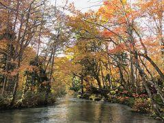 川のせせらぎを聞きながら渓流沿いを歩きます