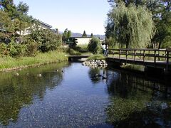 安曇野わさび田湧水群という名水百選に選ばれた場所です 地図を見て行きました  自転車で結構な距離を走ったような記憶があります
