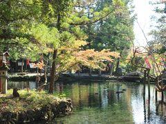 「出流原弁天池」これは湧水池です。周辺の紅葉がきれいになっています。