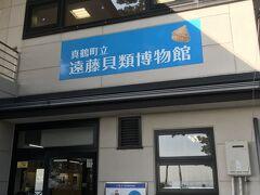 併設する施設に貝の博物館もありました