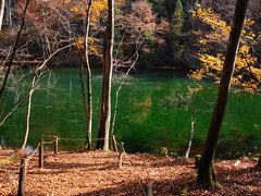 気持ちの良い森の中をしばらく歩いて行くと、綺麗な池が木々の合間に見えてきた。 これが、名水百選に選ばれた龍ヶ窪だな。 ちょうど畔に出られる場所があったので、行ってみることに。