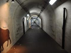 そして辿り着いたのは、清津峡渓谷トンネル。 入口で入場料を払い中へ。 入ってみると、思ったよりもトンネルの中は暖かった。 何でも、トンネル工事の際、温泉が湧き出たそうなので、地熱があるのかもしれない。