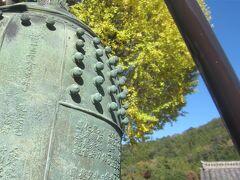 駅前の法光寺の梵鐘。 大きな銀杏の木の前にありました。 銀杏の葉もだいぶ色づいてきましたねっ