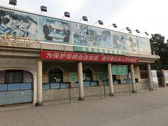 3日目に行くはずだった北京動物園。 曜日の関係で、3日目だと渋滞に巻き込まれるからと、急遽2日目の早朝に行く事になりました。