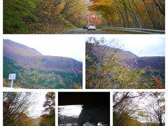 曇り空の中、目指すは中禅寺湖!! いろは坂 時期は過ぎても 大渋滞 前も後ろも車車車...轟かっ(*´Д`)