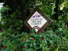 """そうしてたらようやく8時半になりお迎えのバスが到着。 これから3つくらいホテルを回ってからシンガポール唯一の世界遺産、ボタニックガーデン(植物園)へ向かいます。  この植物園、世界遺産ですが別に自然遺産とかではないです。 ざっくり言ってしまうと長い歴史をもつ植物園ということが評価された""""文化""""世界遺産。  ここ、めちゃくちゃ広いので全部歩こうとしたらすごく大変なんですけど、 今回ツアーで行ったのはシンガポールの国花にもなってるランを集めてる国立ラン園のみの散策でした。  駐車場からテクテク歩いてる間だけでなかなかの湿気・・・暑い・・・"""
