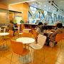 「きょう、ロマンスカーで箱根へ」 富士屋ホテル、箱根美術館、芦ノ湖、岡田美術館、塔ノ沢散歩など