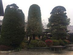 趣きがある建物で、手入れされた中庭も素敵です。