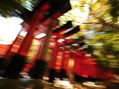 伏見稲荷大社 千本鳥居 到着がお昼前ということもあり、千本鳥居は人だらけ。 仕方がなく流し撮り(笑)