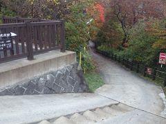 観瀑台からは、秘境の《北温泉旅館》へ下りる道が続いています。こちらの道も紅葉真っ盛りのようです。