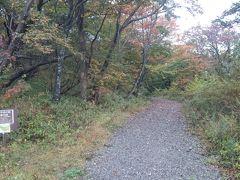 こちらは那須平成の森へ続く道です。