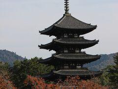 13:30 奈良に到着 荷物をコインロッカーに預け、興福寺へ