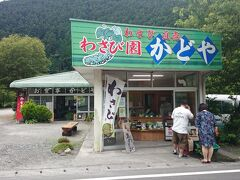 こちらは、七滝観光センターのすぐそばにある「かどや」です。僕が愛してやまない深夜の飯テロドラマ「孤独のグルメ」で、俳優の松重豊さん扮する五郎ちゃんが絶賛しながら食してた「わさび丼」がいただけるお店です。  土日は大行列のようですが、この時は平日でしかもまだ11時にもなっていないためか、お店は空いてました。