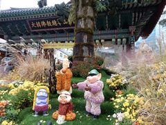 ソウルに秋に来たら、必ずここは行ってほしいと思う場所。  それが曹渓寺。  仁寺洞から1本西側の通りにあります。