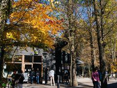 もうひとつ、軽井沢といえば有名な丸山珈琲の支店もあった。