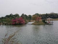 沢の池に浮かぶ中の島と御野島と風に揺られる水面😌🍁
