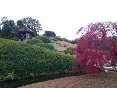 紅葉と唯心山🗻