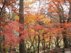 石道寺の紅葉