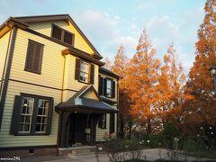 外交官の家と色付くメタセコイヤ