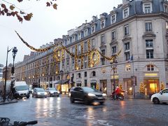 マドーレヌ寺院からコンコルド広場へと続くロワイヤル通りの飾り付けがとっても好み。 鳥かご?の中にロウソクが入ったデザインです。