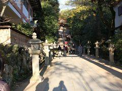 橋を渡って再び対岸にやってきました。 宇治神社参道です。