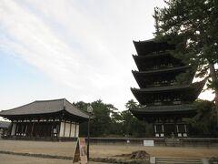 朝の興福寺 おはようございます