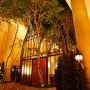 2017年:冬『オリエンタルホテル東京(Oriental Hotel tokyobay)』の『GrandCing(グランサンク)』 で娘の発表会:1位!お祝いディナー(家族で)