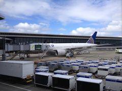 マイルの関係で、ユナイテッド航空にしました、成田にて。 ヒューストン経由ダラスフォートワース着予定でしたが、入国者が多数にも拘らず、係官が数名という信じられない状況で、2時間の乗り継ぎ時間が有ったにも拘わらず、間に合わずに次の便でダラスに着きました ここで、妙な事が有りました、荷物のみが先にダラスに着いているのです 9.11以降、便に乗っていない者の委託荷物は降ろす様になったのじゃないのかなあ、とにかく、ヒューストンには気を付けて。