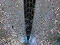 羽田空港国際線旅客ターミナル内から旅は始まる。