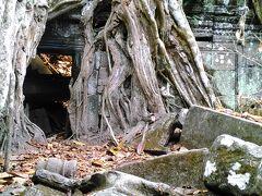 午後からは タ プローム寺院