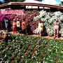 地球の裏で、【アチバイア市:花といちご祭】を訪問する『お花編』 #3(アチバイア市/サンパウロ州/ブラジル)