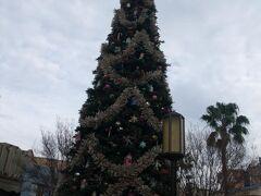 まずは、最初は2年4か月ぶりにディズニーカルフォルニアアドベンチャーへ。 1月ですが、まだクリスマスツリーが飾られてます。