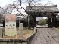 最初に向かうのは妙覚寺。 京の冬の旅では初公開、見どころは、大涅槃図。 堂内は撮影できないが、庭園の撮影はできる。