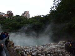 途中で、左手に折れて、やっときたよん。 思っていたほど、広大ではない。 (箱根の大涌谷とか、登別の地獄谷を想像してたからね。) でも、沼?池?からのもうもう湯煙は一見の価値あり。