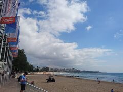 Manlyビーチ到着です!  サーファーがいっぱい!! 波が高くサーフィン日和でした!(私はサーフィンしませんが) 波が高い為か泳いでいる人はサーファー以外いませんでした。  しばらくボーっと海を眺めてましたが、日差しが強くジリジリします!