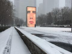 シカゴに到着した日に写真を撮った、ミレニアム・パークのブレードランナーみたいな顔の動画オブジェのところも、真っ白雪景色。