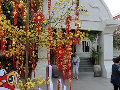 ツアーお約束の免税店 もう春節で、中国人ご一行様の歓迎ムード一色。 我々とは購買力が違います。