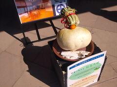 2月8日 仙巌園へ 日本一大きい桜島大根と日本一小さい桜島小みかんが飾られていた この桜島小みかんは期間限定の貴重なみかんで味はとてもよい