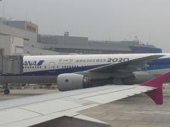 2018年3月1日(木)  数日前から春の嵐予報が出ていました。成田から福岡へ飛ぶ予定ですが、新千歳に飛んだらどうしよう?みそラーメン食べて帰ってくる?なんて思っていました。豚骨の方が好きだけど。  でも、朝のニュースで、「ジェットスター成田~福岡運休」を見てピーチの運航状況を検索「天候調査中」1日2便しか飛ばないのに、朝のが飛ばないと夕方までラウンジ?だめなら明日出直し?とだんだん不安になり早めに空港へ。LCCは飛びさえすれば、揺れようが遅れようがOKと割り切っています。家を出る頃は土砂降り、でも出航時は晴れ。折り返し便が遅れてきましたが、飛ぶようで良かった。福岡周辺で多少揺れました。隣のANAはオリンピック歓迎ムード。