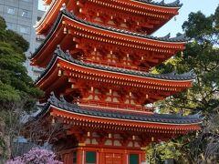 青空と五重塔と桃色の梅  後ろのビルさえ映らなければ、「日本の春」「京都」と言っても通じるかな?