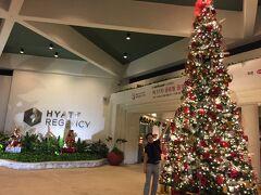 15時半頃、ホテルに到着☆  南国のクリスマスなんて初めてです(*゚▽゚*)