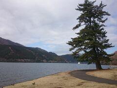 そこから芦ノ湖を眺められます。遠くに見える船は、箱根園と湖尻を結ぶ定期船です。