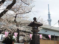 隅田川 墨堤常夜灯と桜  明治4年(1871)、牛嶋神社の氏子17名によって奉納されたもの。 設置当時、この辺りは夜になると真っ暗で常夜灯の火が貴重な明かりだったそうです。
