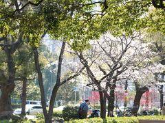 朝から靖国神社、千鳥ヶ淵、皇居の桜をお写ん歩してクタクタです。 皇居の次に日比谷公園に行く計画でしたが、時間もかなり押してしまったので今回はパスしました。  都営三田線で大手町から芝公園へ移動。到着したのは15時前後だったろうか。 駅を出ると、すぐそこは芝公園。辺りを見渡してもランチができそうなお店は無し…。 桜を見に行きますか!