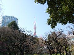 東京タワーが見えます。 久しくこんな近くから東京タワーを見ていなかったなぁ。 スカイツリーが出来てからは浅草、押上方面にはよく行っていたけど…。