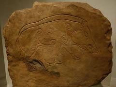 「スコットランド国立博物館」に到着。 この博物館も無料です♪  紀元前4000~2000年のものも無料で見られます!